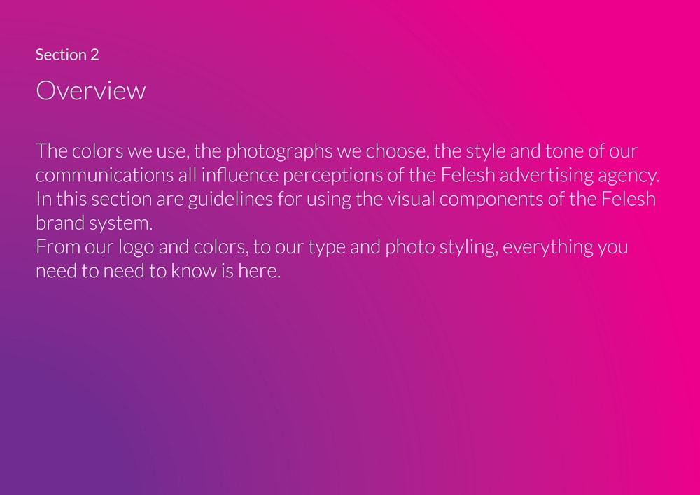 Felesh-Visual-Identity-10-min